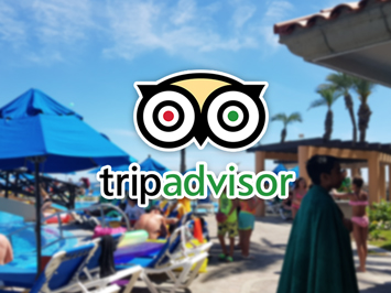 Trip Advisor in Los Cabos!